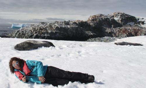 Antarctica - Zeehonden lig