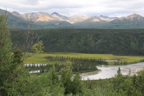 Arctic - Denali Highway view
