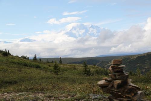 Arctic - Denali NP view