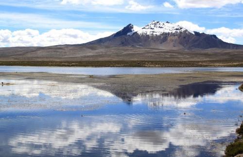 Atacama- Chungara laguna