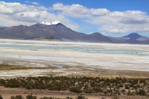 Atacama - Surire Salt lake