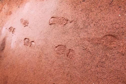 Ayers Rock - voetsporen