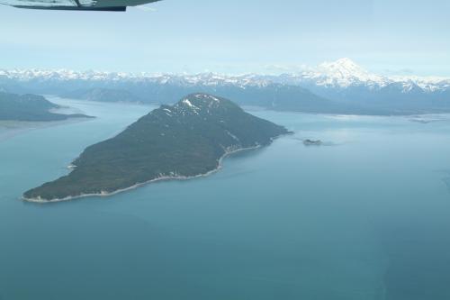 Bearcamp - Island view