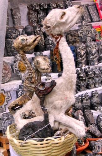 Bolivia - Heksenmarkt