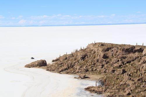 Bolivia - Zoutvlakte