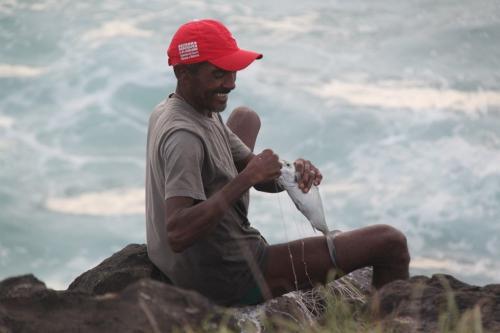 Fernando de Noronha - Catch fish