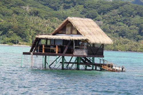 Frans Polynesie - parel kwekerij