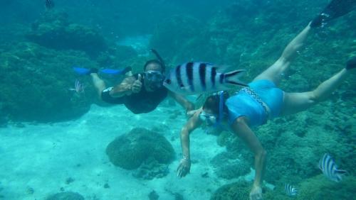 Frans Polynesie - snorkelen