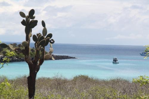 Galapagos - Santa fe baai