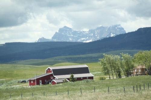 Glacier NP - prairie