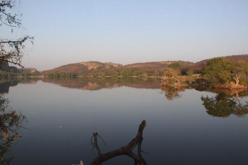 India - Lake Ranthambore NP