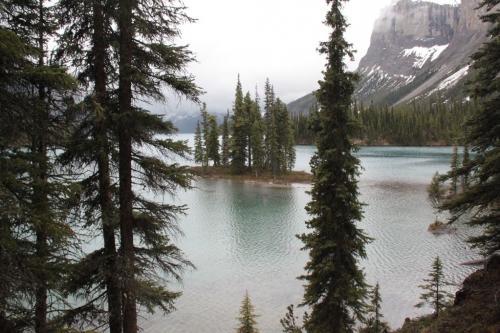 Jasper - spirit Island now