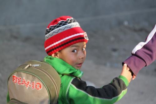 Ladakh - Jongen aan de hand