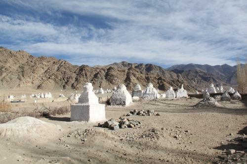 Ladakh - Shey & Stupas