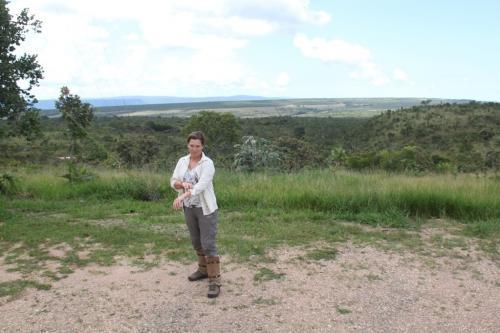 Mato Grosso - Scheenlappen