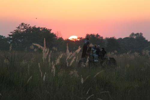 Nepal - Olifantensafari