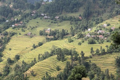 Nepal - Village celebrating Dashain