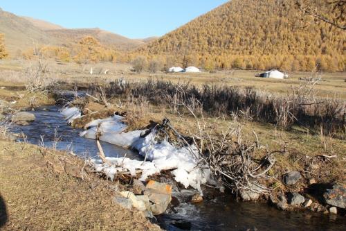 Nomaden - desolate omgeving