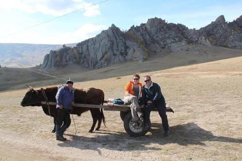 Nomaden - kar met yak