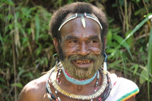 PNG - portret wig