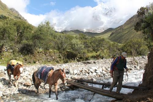 Peru - Paarden met proviand trekking
