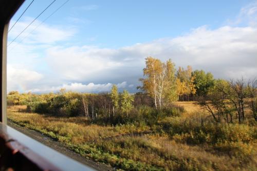Trans Siberian - zicht vanuit trein