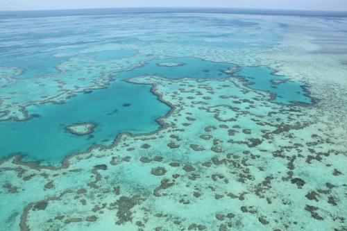 Whitsundays - heart reef