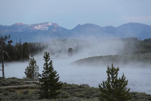 Yellowstone - dampende rivier