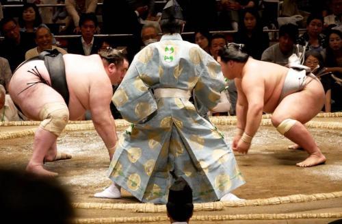 sumo featurefoto