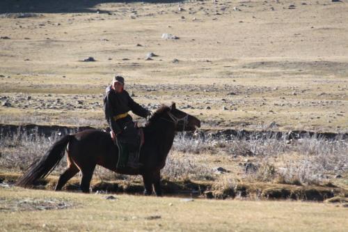 Terhiin Tsagaan nuur Nomaden family (39)