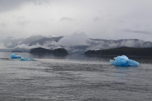 Alaskandream - Tracy arm view