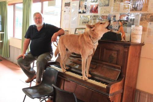 Alice Springs - Dinky Piano