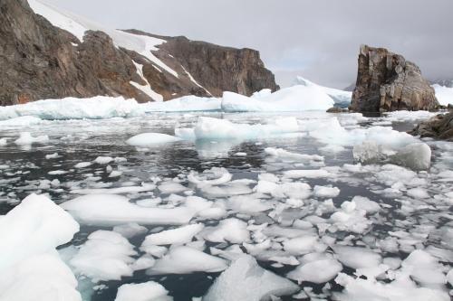 Antarctica - Ice cubes
