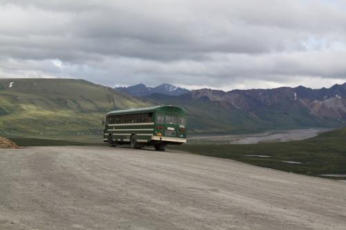 Arctic - bus Denali NP