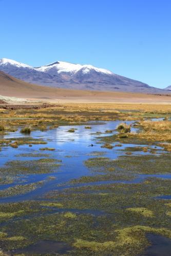 Atacama- Mountains