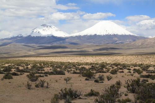 Atacama - Twins
