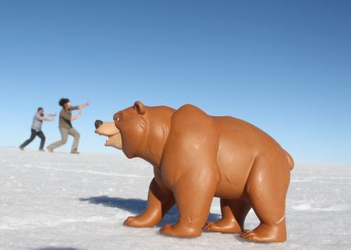 Bolivia -  Salt flat Bear (1)