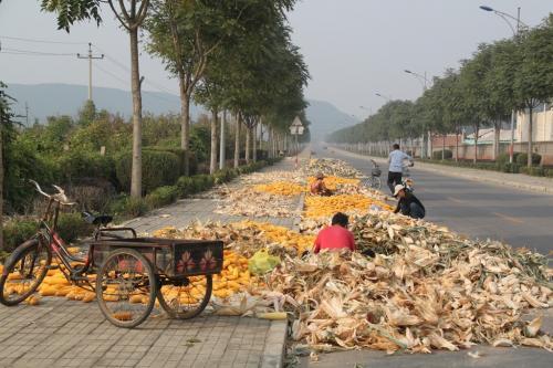 Chinese wall - Straat mais kuisen