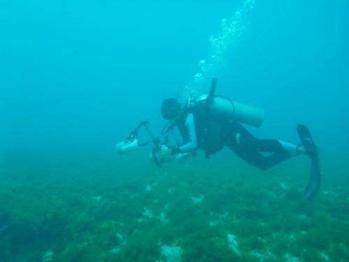 Fernando de Noronha - Diepzeeduiken
