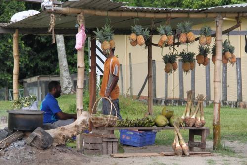 Fiji - winkel aan straat