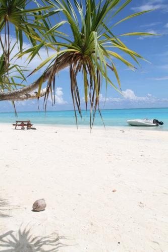 Frans Polynesie - beach bora bora