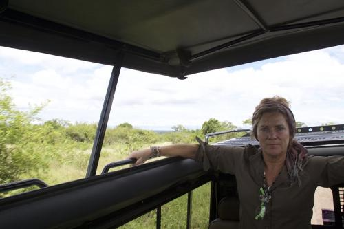 Game drive in Jeep