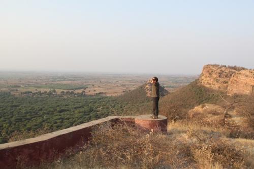 India - Ranthambore NP