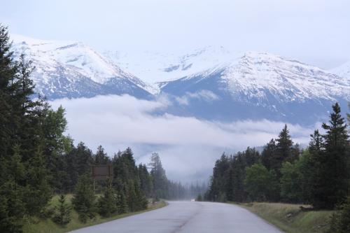 Jasper - Icefields parkway