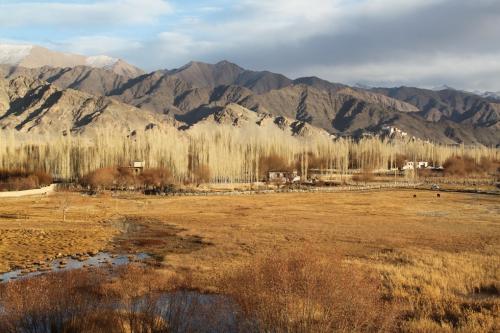 Ladakh - Herfstkleuren