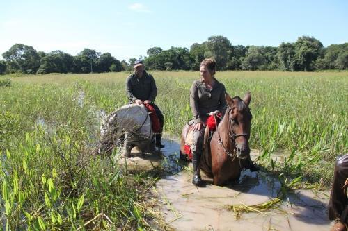Mato Grosso - Horse riding Pantanal