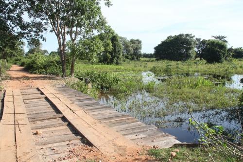 Mato Grosso - Transpantaneira road