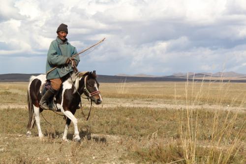 Mongolia - Herder te paard