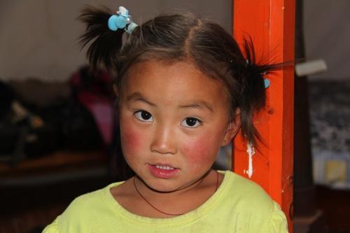 Mongolia - Paardenstaart peuter