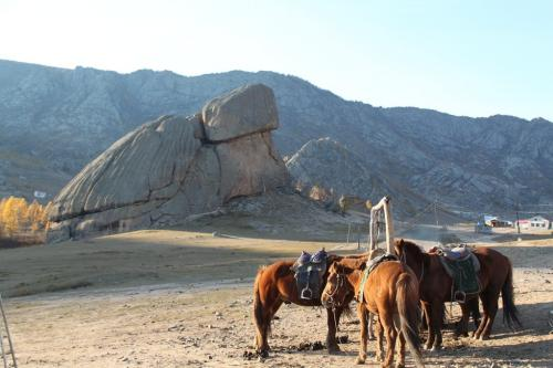Mongolia - Turtle Rock